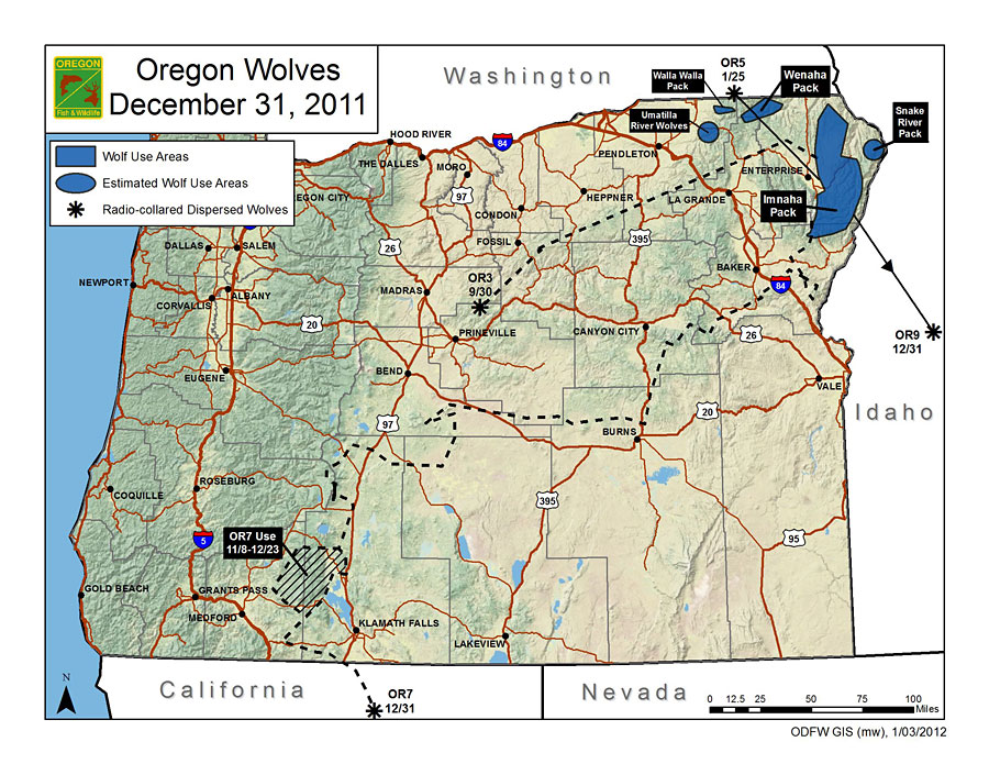 Wolf crosses into california