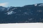 Tundra swans take flight beneath Keddie Ridge