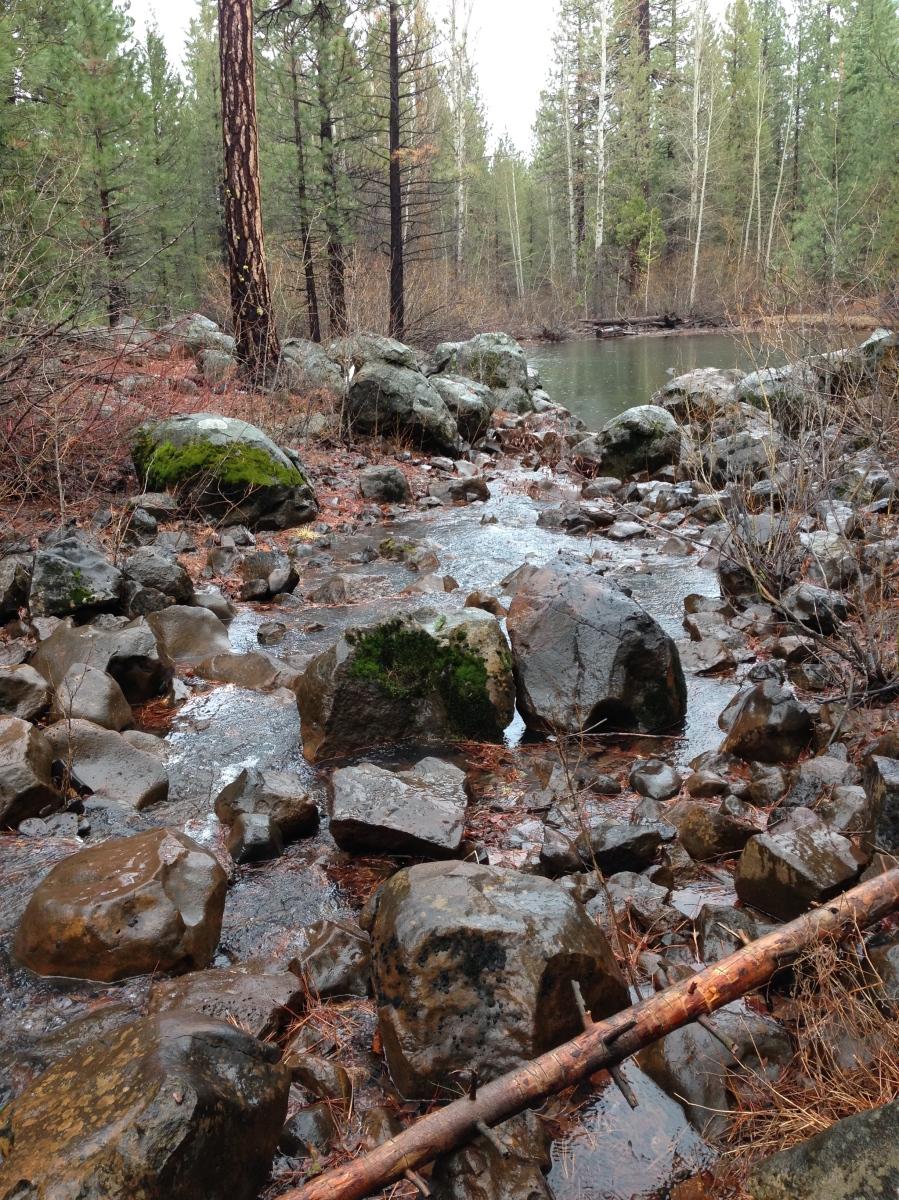 Robbers Creek is flowing.